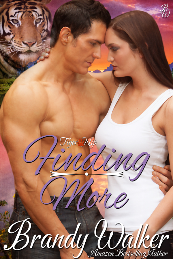 Finding_Cover